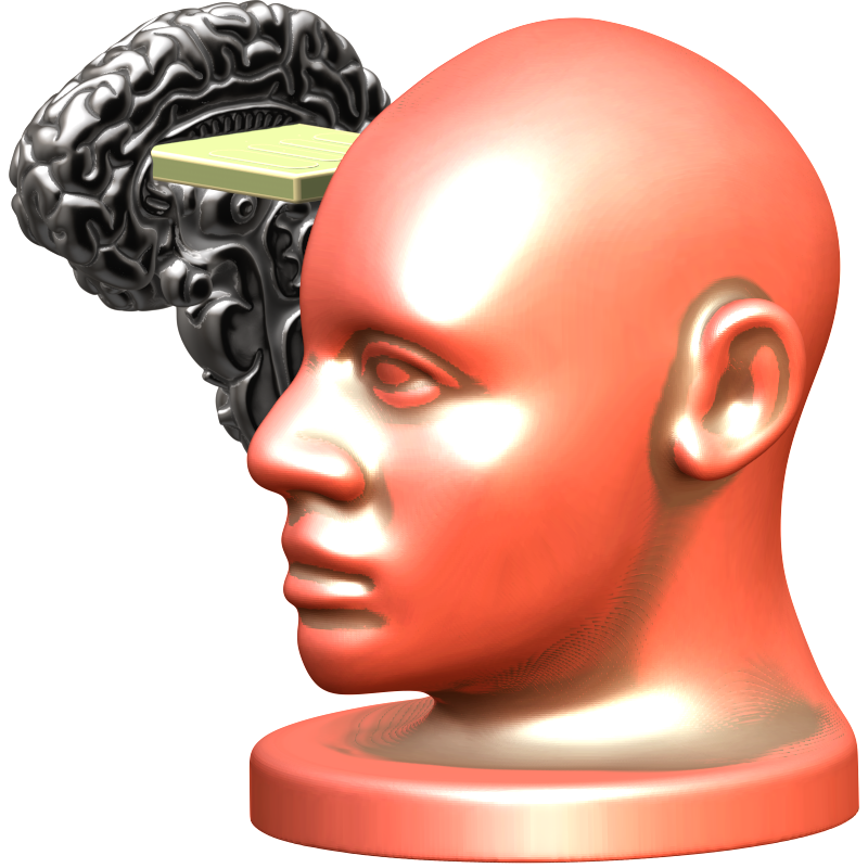 download-headforbrain-03.png