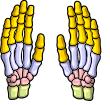 mini-hand.png
