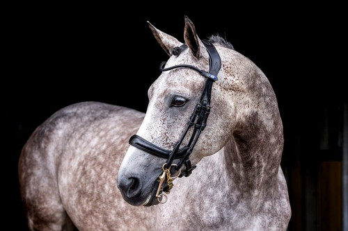 Paragon Double Bridle -  by PS of Sweden