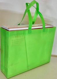 "Tote Bag 15""W x 11.5""H x 4""D (Green)"