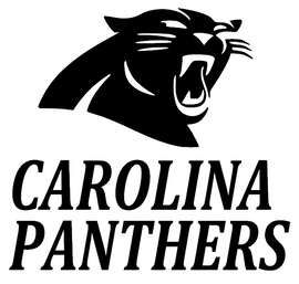 Carolina Panthers with Panther custom Vinyl Transfer (Black)