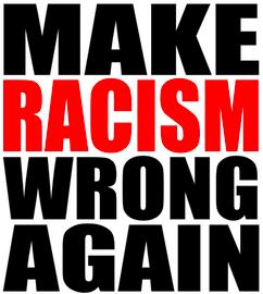 Make Racism Wrong Again - Vinyl Transfer