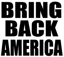 BRING BACK AMERICA - Vinyl Transfer