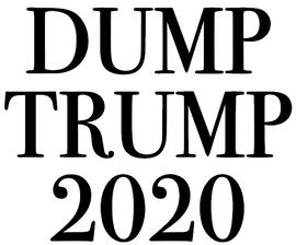 Dump Trump 2020- Vinyl Transfer