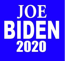 Joe BIDEN 2020 - Vinyl Transfer