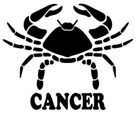 CANCER Zodiac horoscope Vinyl Transfer