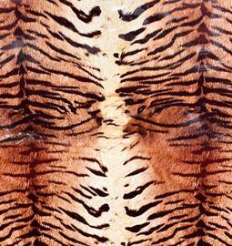 Tiger Skin - Vinyl Sheet/Roll HTV