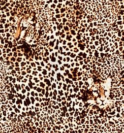 Leopard face - Vinyl Sheet/Roll HTV