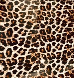 Leopard Skin Large - Vinyl Sheet/Roll HTV