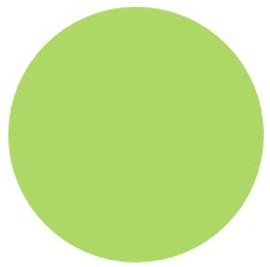 PST Light GREEN - PU Vinyl Sheet/Roll HTV CDU-55