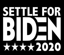 SETTLE FOR BIDEN 2020 - Vinyl Transfer
