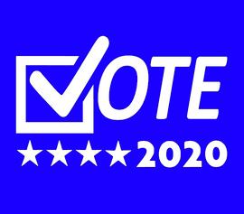 Vote 2020 - Vinyl Transfer