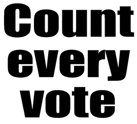 Count every Vote - custom Vinyl Transfer (BLACK)
