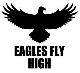EAGLES FLY HIGH - custom Vinyl Transfer