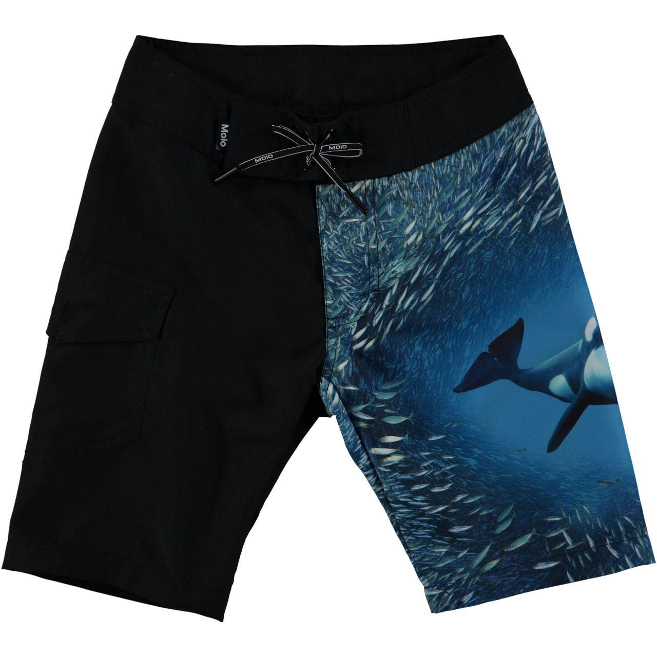 f78817267d MOLO Nalvaro Swimshorts - Orca - Le Petit Kids