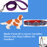 Made From RI Dog Items: The Story Of Family Business