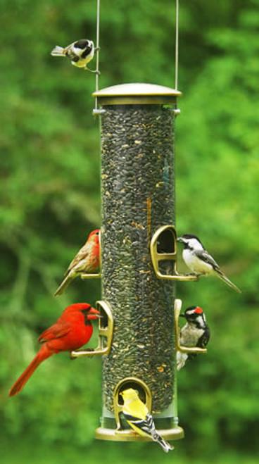 Bird Feeder - Aspects Big Tube Feeder Ð Brass