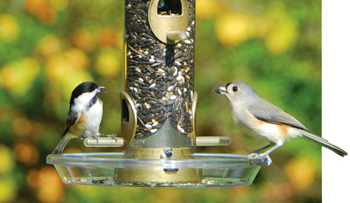 Bird Feeder Accessory - Round Seed Tray