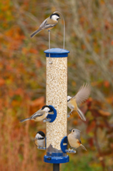 Bird Feeder - Aspects Quick Clean Tubular Seed Feeder