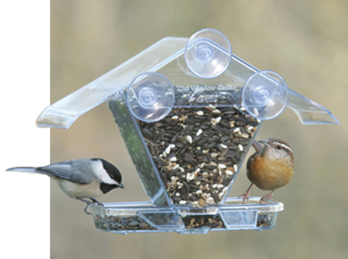 Bird Feeder - Aspects Window Cafe