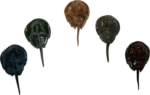 Ceramic Horseshoe Crabs