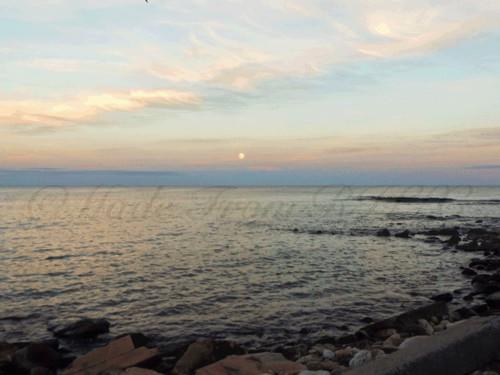 As Evening Falls At The Seawall