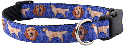 Deluxe Collar - Golden Retriever