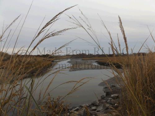 Galilee Salt Marsh