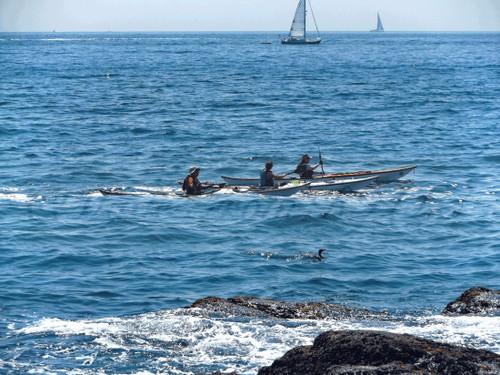 Kayaks Racing Cormorant