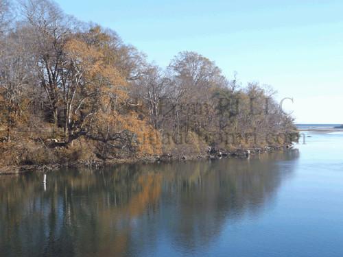 Pettaquamscutt River Trees Shore