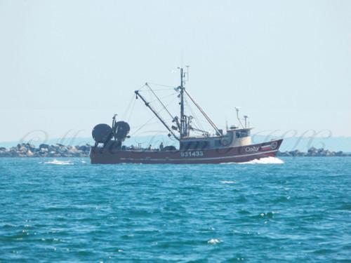 Returning Trawler