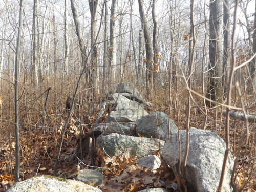 Stone Wall In Woods South Kingstown