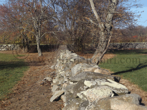 Where Ancient Walls Meet