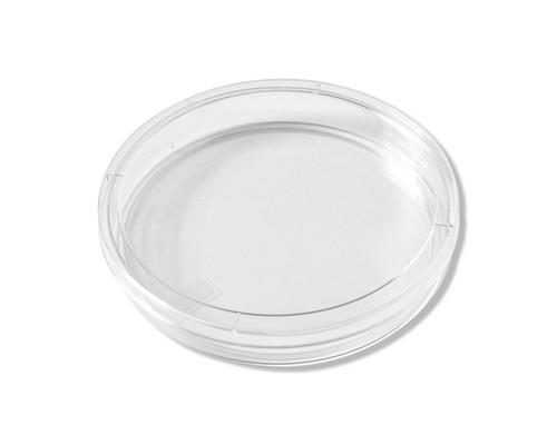 Petri Dish - 17651