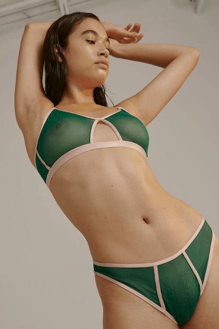 Blush Stretch Mesh High Leg Bikini 238532