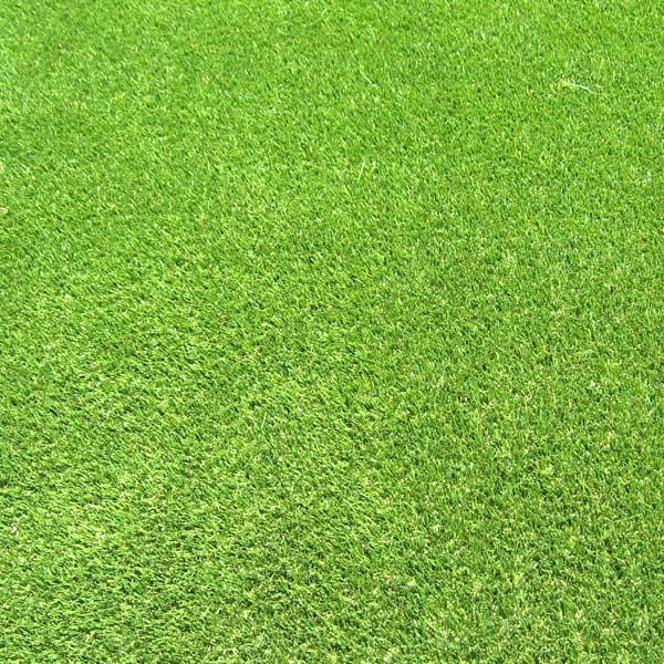 Grade A Lawn Turf