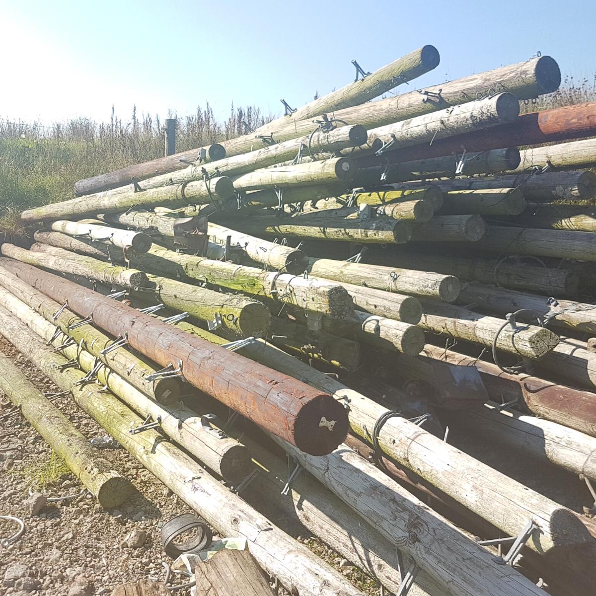 hardwood telegraph poles mitchell turf timber