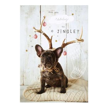 Christmas Card 'Ready to Jingle'