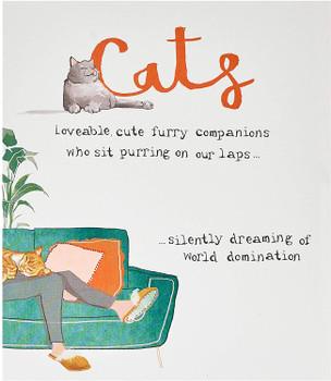 Funny Cats Humour Birthday Card