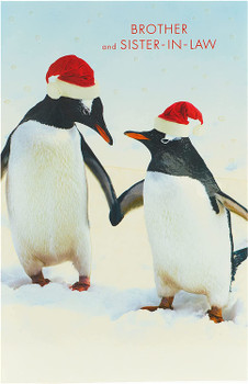 Brother and Sister In Law Couple Pengiuns Design Christmas Card
