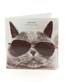 Cool Nephew Birthday Card Funny Cat with Glasses