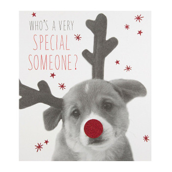 """""""Special Someone"""" Cute Photographic Dog Christmas Greeting Card"""