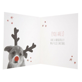 """Special Someone"" Cute Photographic Dog Christmas Greeting Card"