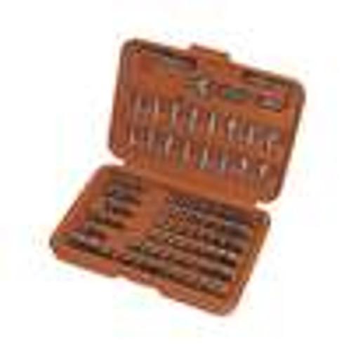 Tool Kit; 100 Piece Screwdriver Bit Set (TBK-1900)