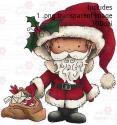 Hollybobs Santa