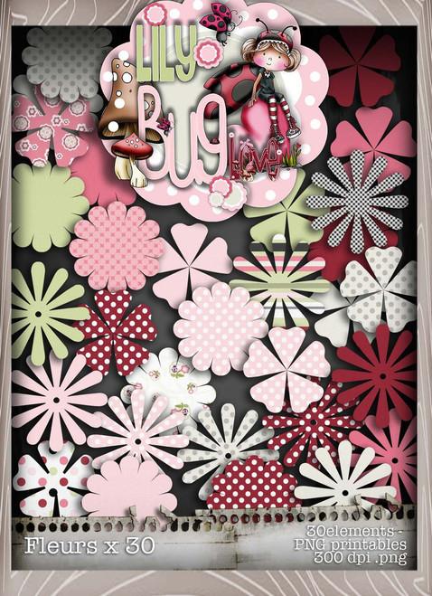 Lily Bug Love Fleurs bundle kit (30 elements) - Digital Stamp CRAFT Download