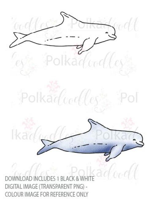 Winnie Starfish/Sandcastles - Dolphin  DOWNLOAD