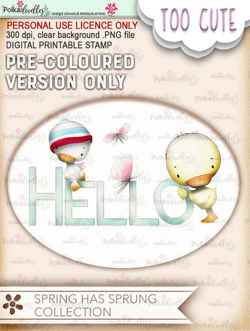 Hello Spring - COLOURED Printable Digital download