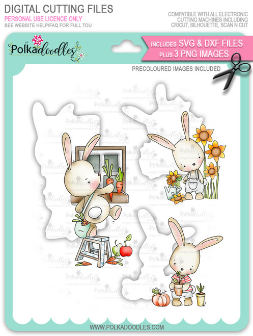 Gil Rabbit - Bundle of precoloured digi stamps/SVG/DXF Cut Files