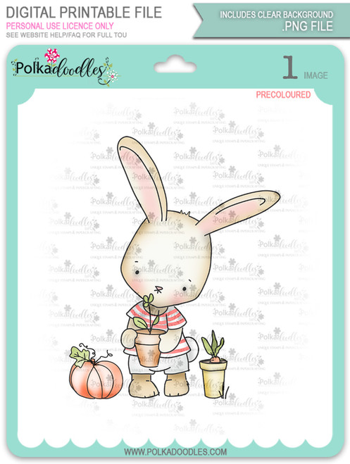 Gil Rabbit Gardening - Precoloured digi stamp